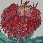 Chrysanthemum by Gary Price