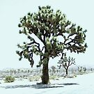 Biggest Tree In The Park - Joshua Tree National Park, San Bernardino-Riverside County, CA by Rebel Kreklow