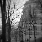 Montmartre Street by Tom  Reynen