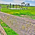 Fenced Off (HDR) by Heather Linfoot