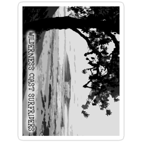 Wilderness Coast Surfriders - Pearl Banksia Sticker by wcsurfriders