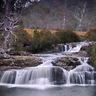 Cascades, Cradle Mountain by Karen Scrimes