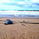 Danger tides. by BonnieRose