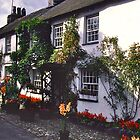 Hawkshead, Cumbria by David Davies