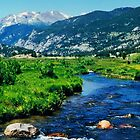Rocky Mountain National Park by Karen  Rubeiz