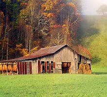 Lowe's Barn by Annlynn Ward
