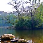 Bolam Lake (2), Northumberland  by Chris Vincent
