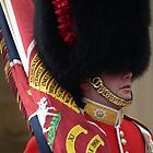 Palace Guard - Changing of the guard by Bernie Stronner