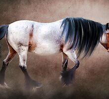 Roan Pony by Ethiriel