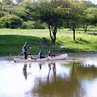 Makoro on Okavango River, Botswana, Africa by Irene  van Vuuren