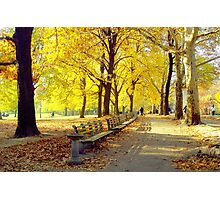 Autumn Afternoon in Central Park  Photographic Print