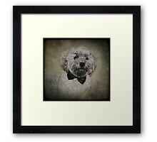 Move over James Bond, the new kid's in town! Framed Print