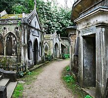Highgate Cemetry 2 by Adri  Padmos