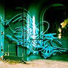 Lillesden Graffiti #4 by Richard Pitman