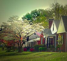 Dogwood Neighborhood by hickerson