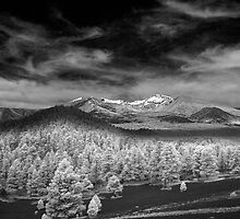 San Fran Peaks in Infrared by Sue  Cullumber