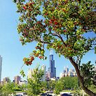 Red blossom tree in Chicago  by Alberto  DeJesus