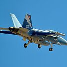Boeing EA-18G Growler by Eleu Tabares