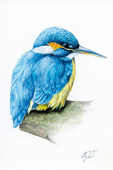 River Kingfisher by Sarah Trett