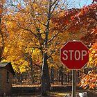 autumn by kenfarnaso