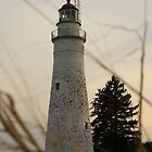 Fort Gratiot Lighthouse #1 by Joy Fitzhorn
