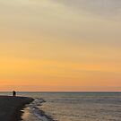 Walking the shore at sunset by Joy Fitzhorn
