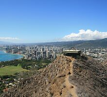 Waikiki and Honolulu from Diamond Head by Maurine Huang