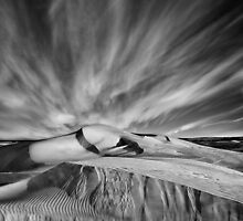 Windswept - Lancelin - Western Australia by LukeAustin