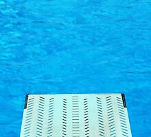 Diving Board 24 by Brian Swartz