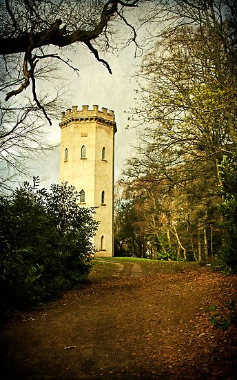 Nelson's Tower, Forres by OpalFire
