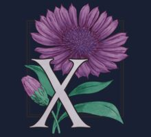 X is for Xeranthemum patch by Stephanie Smith