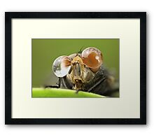 I Have A Glasses .. Yeeeah Framed Print