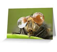 I Have A Glasses .. Yeeeah Greeting Card
