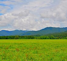 soft mood countryside by Daidalos