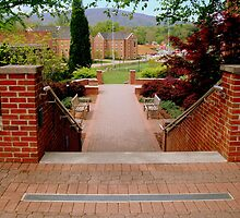 Alma Mater - ROANOKE COLLEGE series -3 by ctheworld