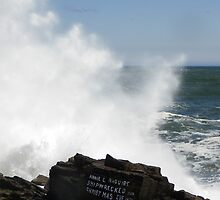 More Big Surf from the Storm by MaryinMaine