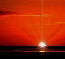 THE SUN HAS RISEN by RoseMarie747