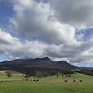 Meander valley beauty - Tasmania by gaylene