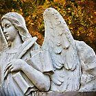 Autumn Angel by olga zamora