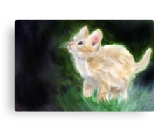Cute Kitten Oil Painting Canvas Print
