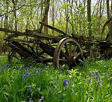 Wood Wagon by Robert  Geldard