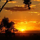 It's A Sunset Photo, From The Lookout At Narrabri, NSW Australia. by Liza Barlow