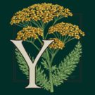 Y is for Yarrow patch by Stephanie Smith