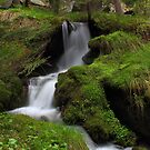 Antrona Valley, National Park       (2) by jimmylu