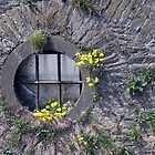 Round Window by villrot