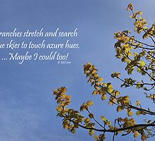 Haiku Branches by sarnia2