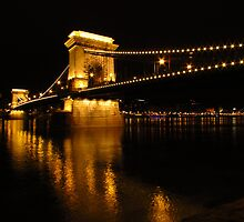 Chain Bridge Over The Danube by wiggyofipswich