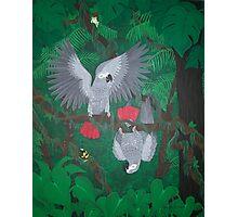 Playful Greys - African Grey Parrots Photographic Print