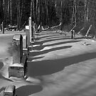Graves at Dusk, Adirondacks by Michael Irrera