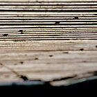 Corrugated Roof by Anthony Woolley